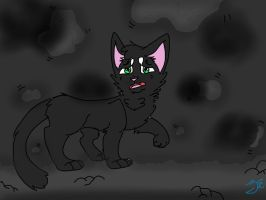 Death awaits you.. Hollyleaf by xXFluffehWolfXx