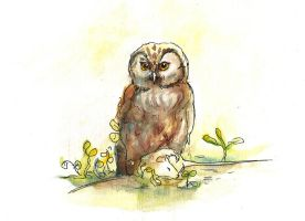 Owl with mouse by mary-petroff