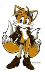 Female Tails by Twisted-wind by Zenox-furry-man