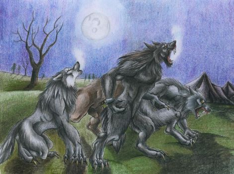 Attack of the wolves by punxnotdead309