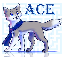 Ace (Contest Entry) by Spiral-Teardrop
