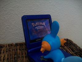 Playing Pokemon Sapphire by mudkipofpower