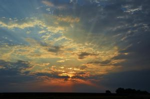 Sky Rays by Marilyn958