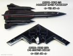 Revell SR-71 and B-2 bomber by ninjatoespapercraft