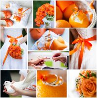 Orange wedding collage by Aleksie