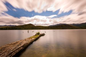 Duck's Perch by Immerse-photography