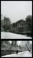 Snowfever. by mloes
