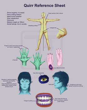 Quirr reference sheet by temary44