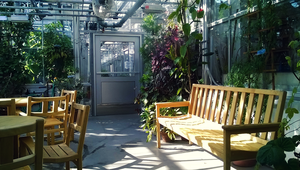 life sciences center greenhouse by SomeoneWhoDoodles