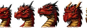 Red Dragon Age Progression by VegasMike