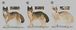 wolf adoptables by DawnFrost