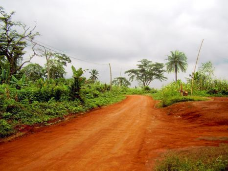 travel in cameroon by grim86