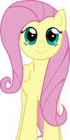 Fluttershy .:facing at YOU!:. .:vector:. by quadren4