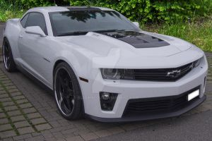 2013- White Chevrolet  Camaro - 1   (Update ) by blueMALOU