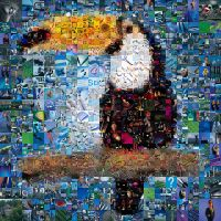 Toucan Mosaic by Cornejo-Sanchez