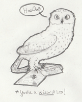 Draw Request - Snowy Owl Delivery by Sunnybrook1