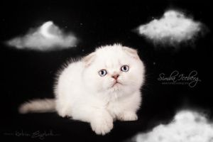 Sweet cloud :) by Katrin-Elizabeth