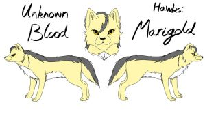 Unknown Blood - Marigold Reference by fluffylovey
