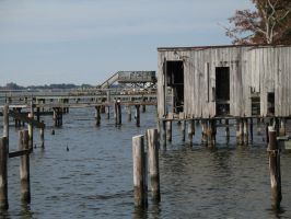 the docks by LuckyStock