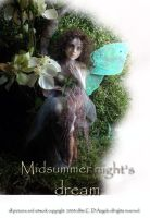Midsummer night's dream 2 by cdlitestudio