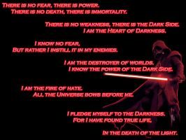 Darth Vader - The Sith Code by dragonseraph