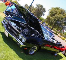 Sweet Chevelle SS by StallionDesigns