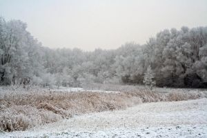 winterland 48 by priesteres-stock