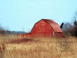 Red Barn in Field by MadGardens
