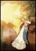 The Princess Zelda by Forza27