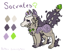 Socrates by alinoravanity