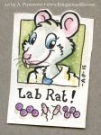 Lab Rat by artyewok