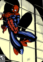Spider Man 2007 (colored) by RCKNP