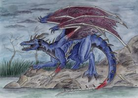 Drakhen - In the swamp.. by Psydrache