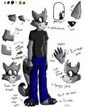 Chase the Raccoon Ref Sheet by x-Wolfeh-x