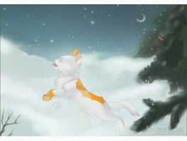 winter by orum-the-cat