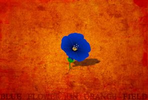 Blue flower on orange field by Calliope00