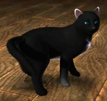Midnightclaw at Sims3 by Zeudo