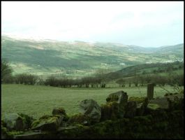 Green landscape in Wales by jonnyc23