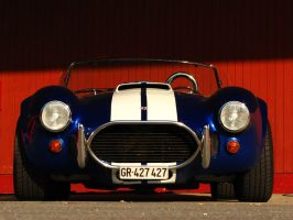 blue cobra by AmericanMuscle
