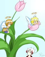 TnC: Angels are everywhere by Kaysa