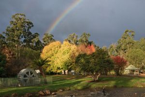 Marysville Colours by Bjay70