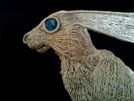 Large Hare 8 by braindeadmystuff