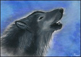 Howling wolf in winter... by Nessa293