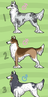 Elvish Hound Adopts by ashleigheperry