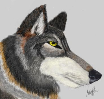 Wolf Painting by Wolkenstreit
