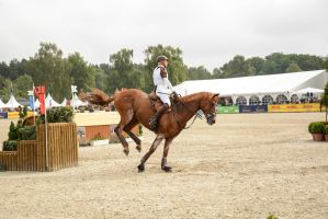 Eventing Stock - Triple Bush by LuDa-Stock