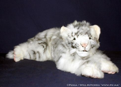 Hansa - White floppy Tiger cub plush by dapumakat