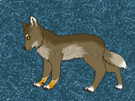 Custom for LupusAvani by RivotAdopts