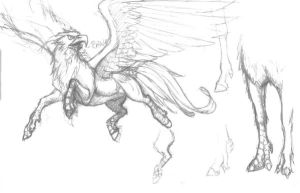 Hippogriff sketch mess by LadyScourgE