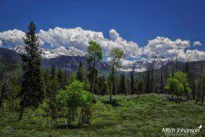 Meadows and Mountains by mjohanson